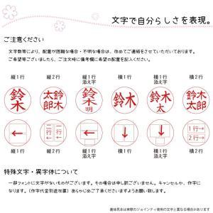 定形外郵便送料無料 キャップレス ジョインティ J9 ネーム印 朱肉不要|ogawahan|10