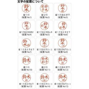 送料無料 シャチハタ 印鑑ディズニープチネーム|ogawahan|04
