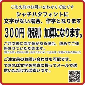 送料無料 シャチハタ 印鑑 ネーム6キャプレ 訂正印 直径6ミリサイズ 小判型も作れます|ogawahan|04