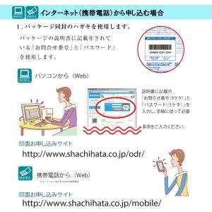 送料無料 シャチハタ ネーム印  キャップレス9 猫柄 メールオーダー品 限定品|ogawahan|07