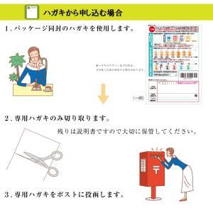 送料無料 シャチハタ ネーム印  キャップレス9 猫柄 メールオーダー品 限定品|ogawahan|08