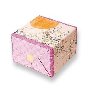 定家の月 大缶(サラダ19枚・和三盆19枚・えび19枚)(係数25)