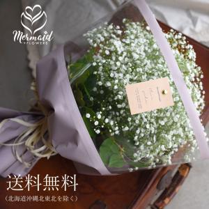 ホワイト かすみ草 カスミソウ 花束(大きいサイズ) j純白 白い かすみそう 花束 ブーケ 生花 ドライフラワーにも 送料無料|ohanakakumei