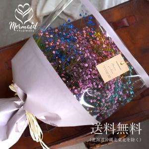 レインボー かすみ草 カスミソウ 花束(大きいサイズ) ミックス かすみ草 花束  ブーケ 生花 ドライフラワーにも 送料無料|ohanakakumei