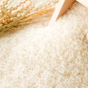 28年産丹波たぶち農場コシヒカリ(特別栽培米)5kg