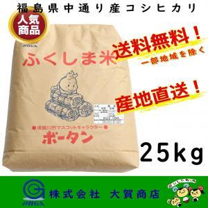 新米 2年産 コシヒカリ 米 お米 精米 安い 美味い 福島県産 送料無料 福島県中通り産コシヒカリ25kg|ohga-syouten