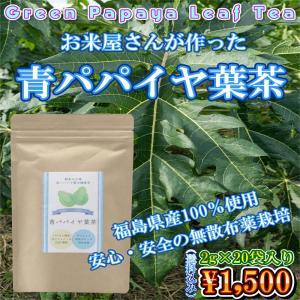 青パパイヤ葉茶 2g×20袋入り 美容 健康 酵素 スリム  送料無料|ohga-syouten
