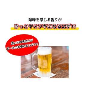 「まっ黒さきいか」×5袋 メール便/送料無料/...の詳細画像4
