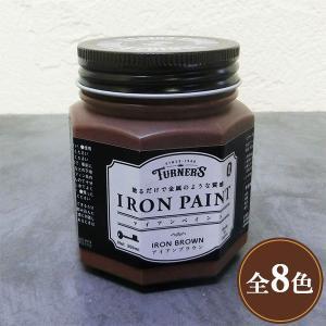 アイアンペイント 200ml(2〜2.4平米/1回塗り) ターナー色彩/水性/安全/DIY/ペイント