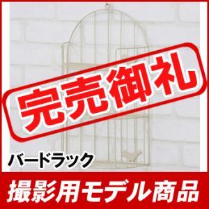 【撮影用モデル商品】バードラック AKB-404IV【九州限定送料無料】|ohkawakagu