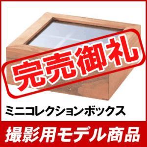 【撮影用モデル商品】ミニコレクションボックス AKB-141【九州限定送料無料】|ohkawakagu