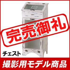 【撮影用モデル商品】チェスト AKB-255WH【九州限定送料無料】|ohkawakagu