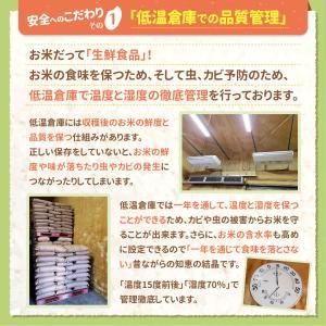 米 お米 5kg×2袋 10kg 国産米 家庭...の詳細画像2