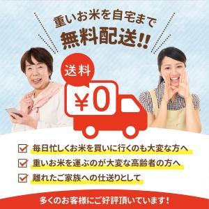米 お米 5kg×2袋 10kg 国産米 家庭...の詳細画像4