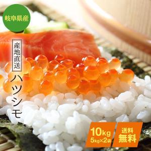 ハツシモ お米10kg 玄米/分づき精米無料(平成29年産)...