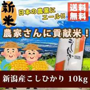 米 お米 新米 新潟 コシヒカリ お米10kg 5kg×2袋 農家さんに貢献米 玄米/分づき精米無料 こしひかり ohnoshokuryou-shop
