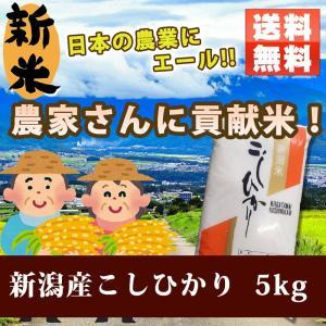 テスト(追加ファイルdata_add)米 お米 新米 新潟 コシヒカリ お米5kg 農家さんに貢献米 玄米/分づき精米無料 こしひかり ohnoshokuryou-shop