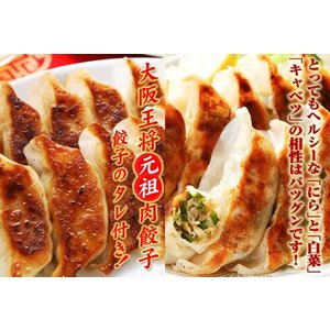 大阪王将 肉餃子とスタミナミニセット