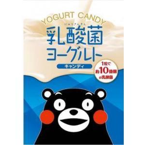 【送料無料】オークラ製菓 乳酸菌ヨーグルトキャンディ 100g(20袋入×1ケース)【賞味期限:2021.08.31】|oideyaoosaka