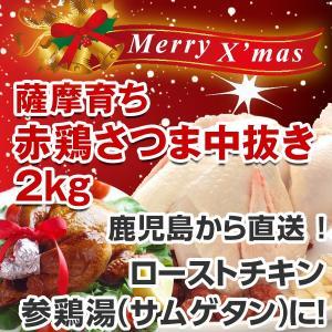 【数量限定】クリスマス用ローストチキン中抜き丸鶏 赤鶏さつま 約2K
