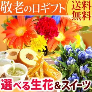 敬老の日 プレゼント 花 お菓子 グルメ  鉢花 生花 アレンジメント|oimoya
