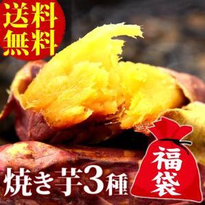 初売り 福袋 2019 焼き芋 食べ比べセット やきいも 紅はるか 安納芋|oimoya
