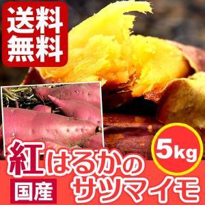 国産さつまいも 焼き芋にも人気 紅はるか 生芋  サツマイモ 薩摩芋 5kg|oimoya