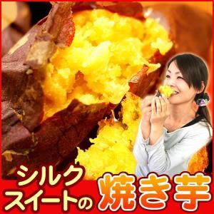 シルクスイートの焼き芋 国産さつまいも 人気 やきいも|oimoya