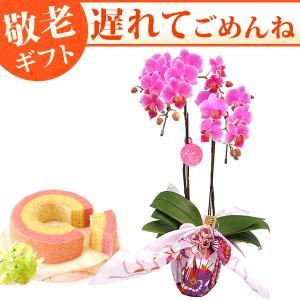 敬老の日プレゼント 花の贈り物 送料無料 胡蝶蘭 ギフト 敬老の日ギフト スイーツ|oimoya