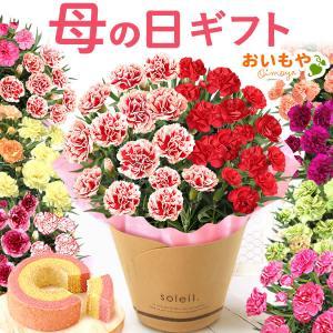 母の日 花 ギフト 母の日プレゼント スイーツ 2019 mothersday カーネーション 鉢植え お菓子 oimoya