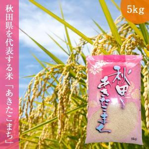 あきたこまち 5kg (5kg×1袋 ) 令和2年産 秋田県産 送料無料 お米 精白米|oishii-kome