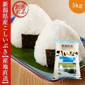 新潟 こしいぶき 5kg   令和2年度 コシイブキ 新米 白米|oishii-kome