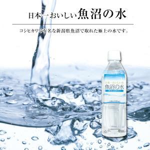 硬度16の超軟水!日本一おいしい魚沼の水 500ml×24本|oishii-kome