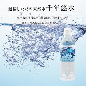 新潟の名水 越後しただの天然水【千年悠水】 500ml×24本 ミネラルウォーター|oishii-kome