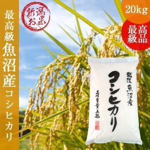 令和2年新米 新潟県魚沼産コシヒカリ20kg(5kg×4) 白米 うるち米 ご贈答 ギフト 特A地区|oishii-kome
