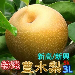 豊水/新高/新興 3L14玉,吉田照美の番組で紹介 注文順に...