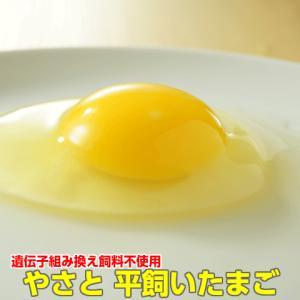 卵 タマゴ  やさと平飼い卵M20個   安全安心 こだわり新鮮卵 産み立て産地直送 たまご 玉子 ...