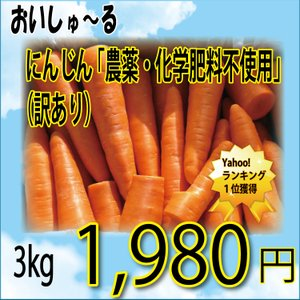 無農薬無 化学肥料 にんじん 訳あり 3kg クール便 人参 ニンジン 送料無料の一部地域を除く
