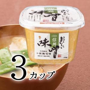 おいしい味噌 750g 3カップ 天然醸造の十割麹味噌 国産大豆と米を使用した白粒味噌 信州味噌|oisi