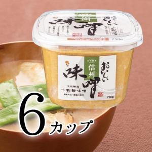 おいしい味噌 750g 6カップ 天然醸造の十割麹味噌 国産大豆と米を使用した白粒味噌 信州味噌|oisi
