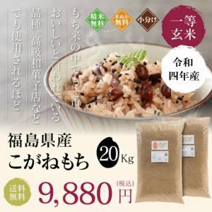 新米 お米 20Kg 福島県産 こがねもち 送料無料 精米 令和元年産 一等米|oisiiokomedesu