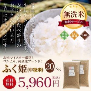 訳あり ブレンド米 お米 20kg ふく姫 送料無料 無洗米 玄米 中粒米