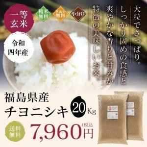 新米 お米 20Kg 福島県産 チヨニシキ 送料無料 無洗米 精米 令和元年産 一等米|oisiiokomedesu