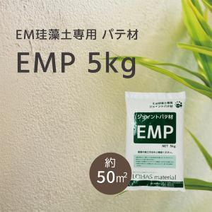 LOHAS material EM珪藻土用 ジョイント処理材(パテ材) EMP|ok-depot