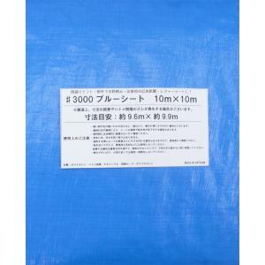 ブルーシート #3000規格 サイズ10m×10m 厚手防水 2枚入り