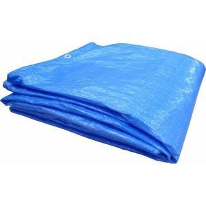 ブルーシート 薄手 3.6m×5.4mサイズ 規格#1000 10枚セット