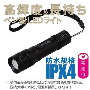 LED ライト 懐中電灯 ペン型 100ルーメン ズーム機能付き 10本 電池付属 okacho-store
