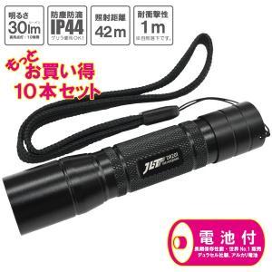 LED ライト 照明器具 懐中電灯 ペン型 30ルーメン DR201 電池付属 10本セット okacho-store