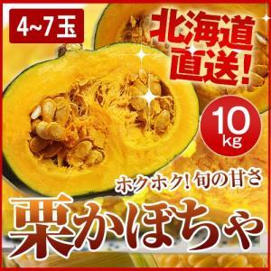 栗かぼちゃ 「くり将軍」 北海道産 カボチャ(10kg/約4〜7玉) 産地直送 送料無料|okadanouen