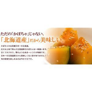 栗かぼちゃ 「くり将軍」 北海道産 カボチャ(10kg/約4〜7玉) 産地直送 送料無料|okadanouen|03